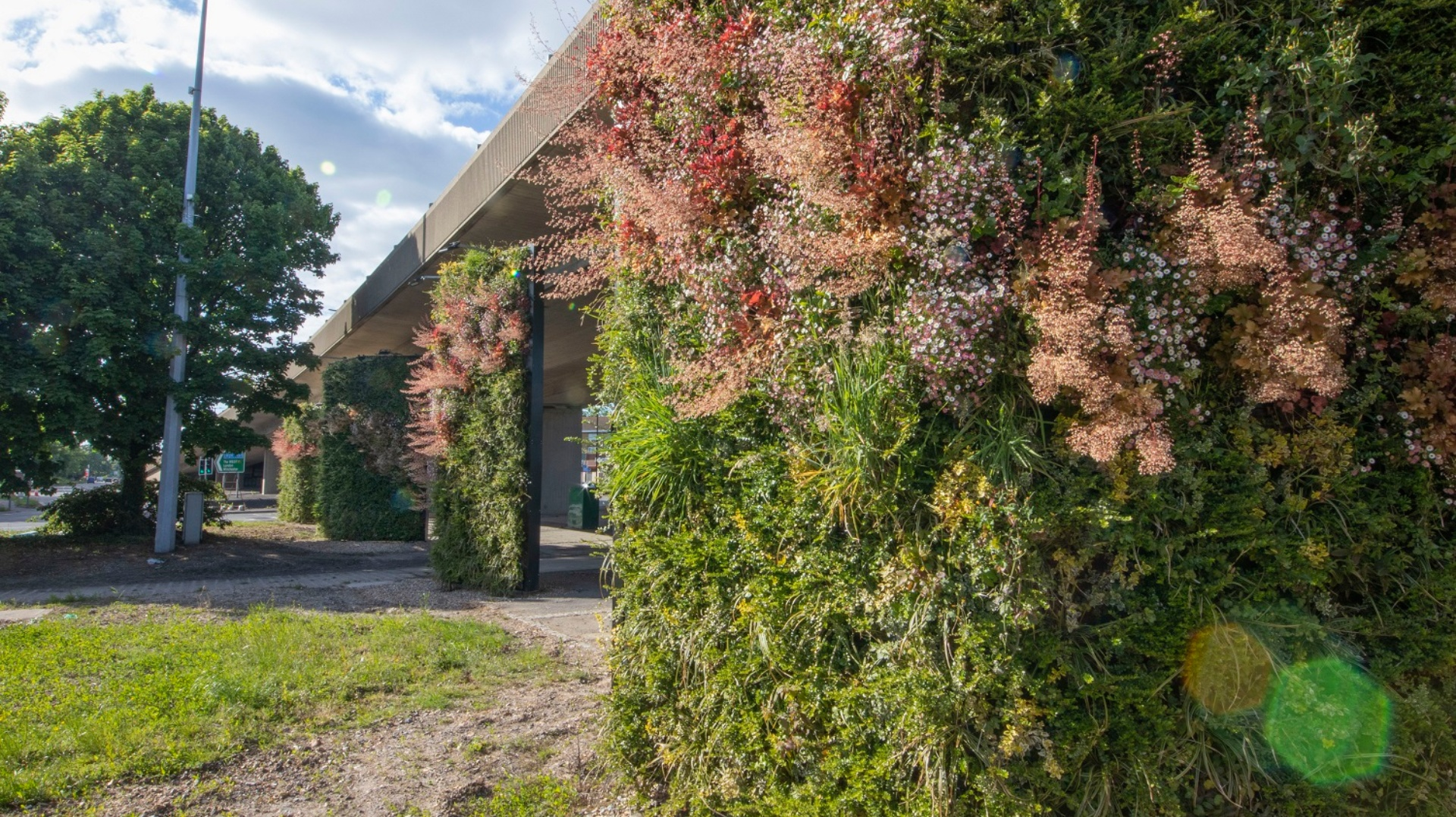 New Living Wall is first of its kind in UK